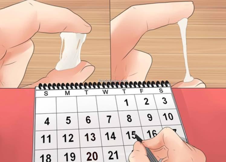 Cách tính ngày rụng trứng CHUẨN nhất cho chị em 3