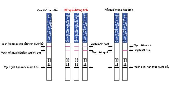 que-thu-thai-Quickstick-4