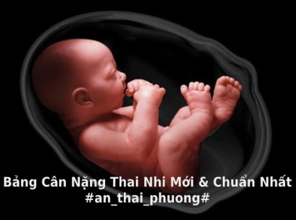 bang_chi_so_thai_nhi_theo_tuan_tuoi_1